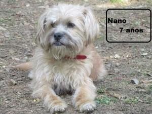 nano-5-7-2014