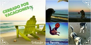 CERRAMOS POR VACACIONES !!!!!!!!