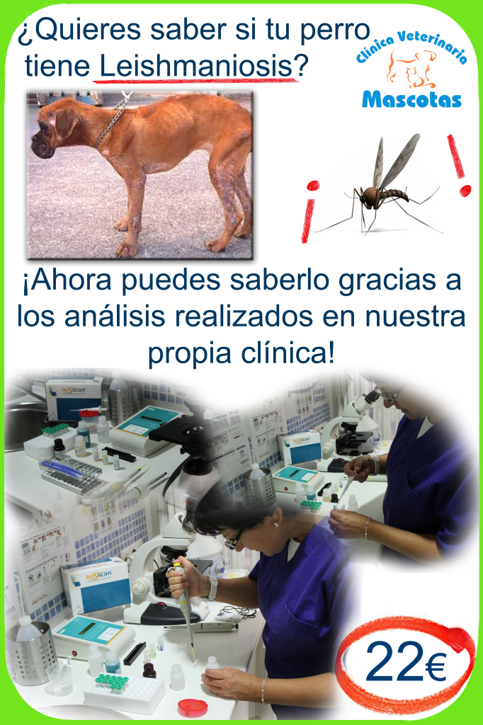 cartel analisis leishmania